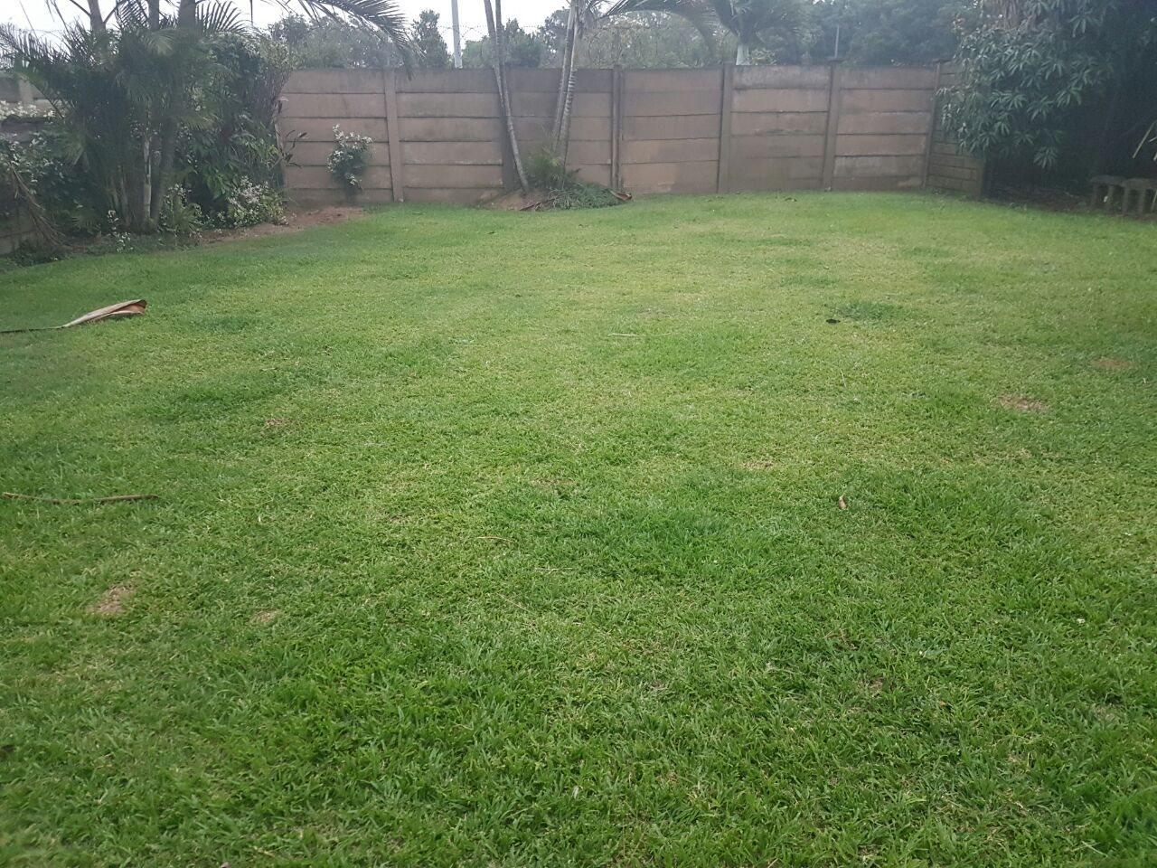 Arboretum property to rent. Ref No: 13569635. Picture no 8