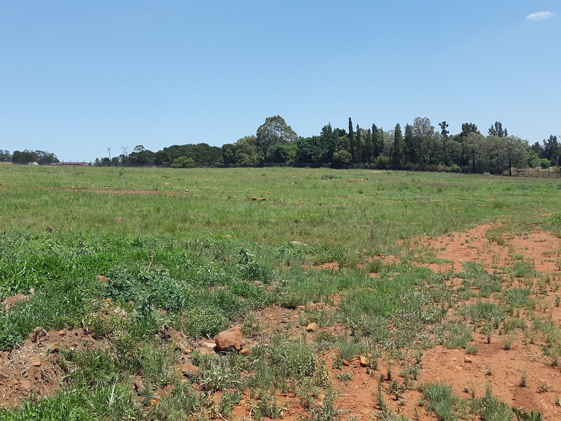Doornkloof A H for sale property. Ref No: 13283502. Picture no 26