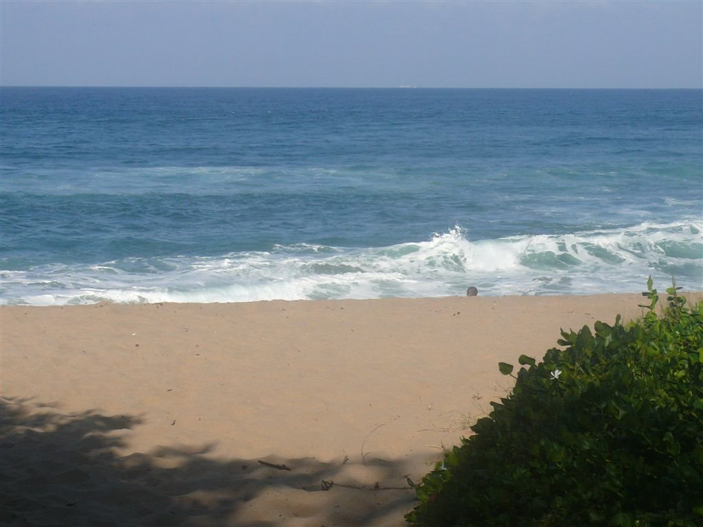 Sea Park property for sale. Ref No: 13332810. Picture no 7