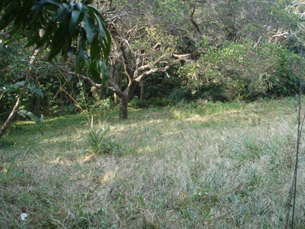 Pumula property for sale. Ref No: 12756516. Picture no 3