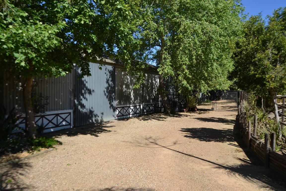 Wellington Central property for sale. Ref No: 13398497. Picture no 14
