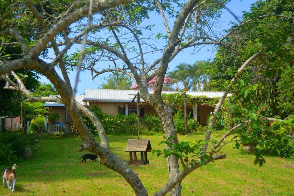 Izotsha property for sale. Ref No: 13458973. Picture no 3