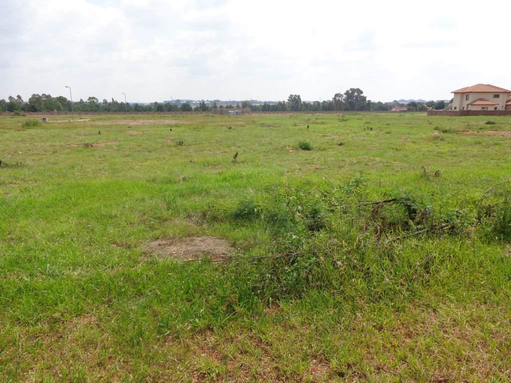 Irene property for sale. Ref No: 13395278. Picture no 9