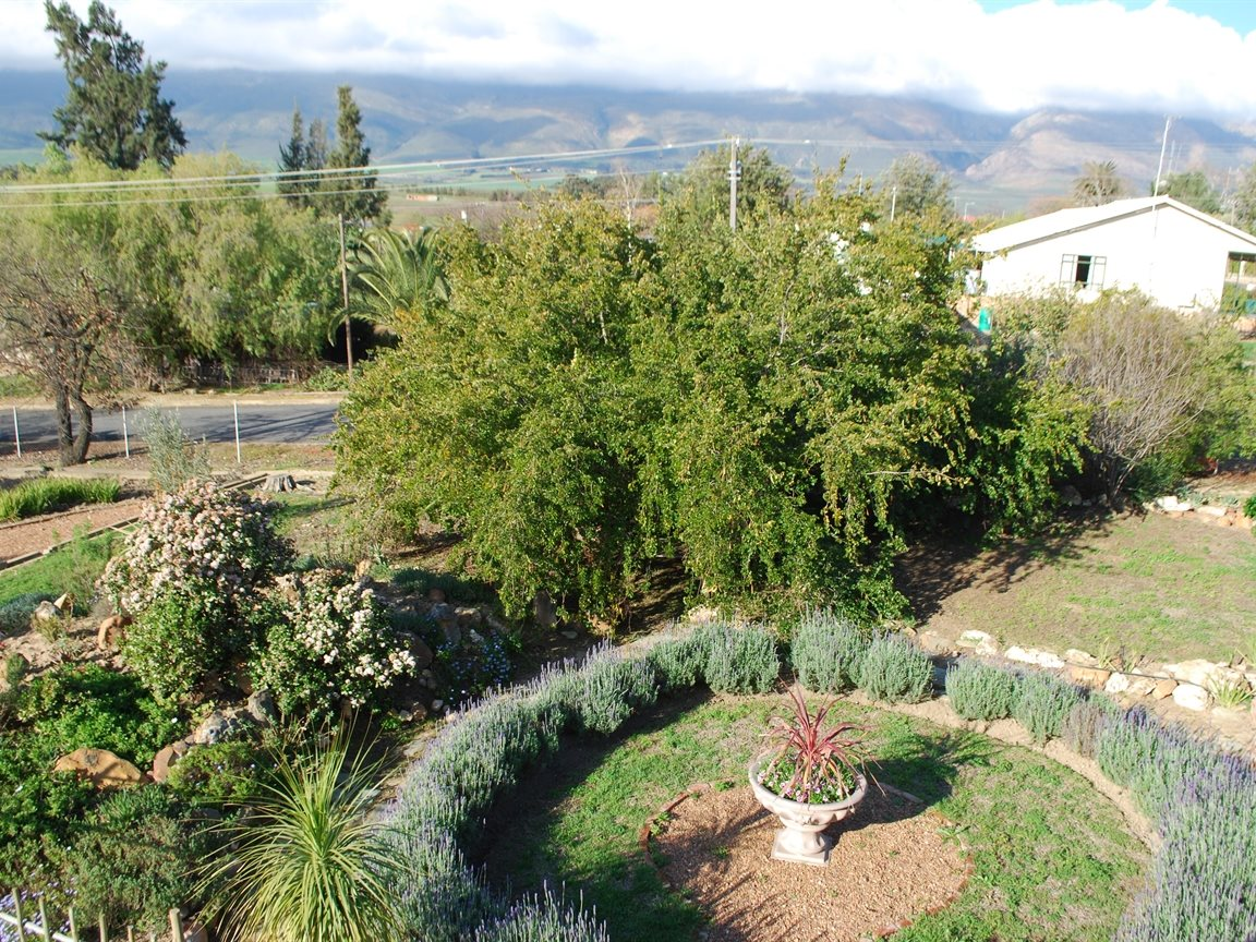 Tulbagh property for sale. Ref No: 13233486. Picture no 28