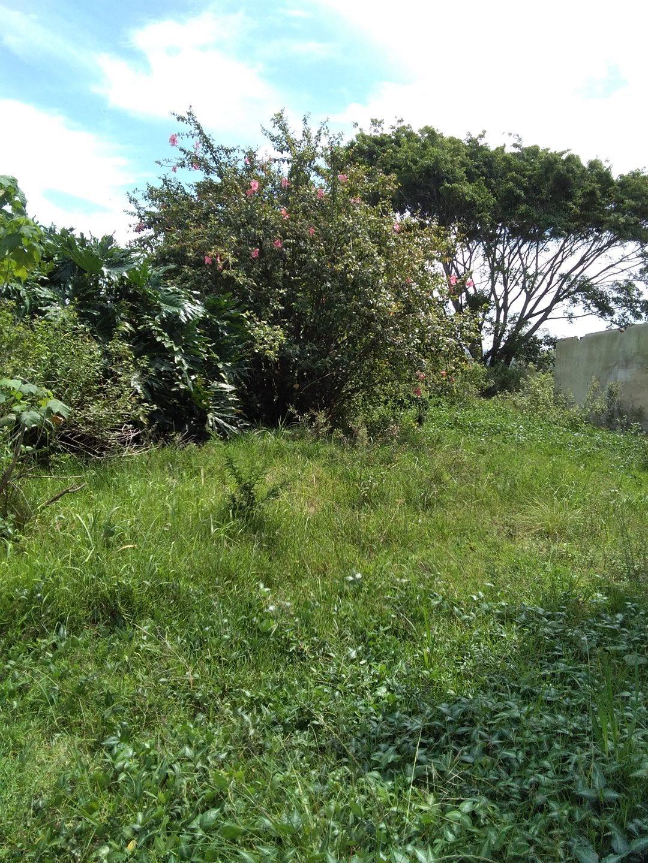 Craigieburn property for sale. Ref No: 13591749. Picture no 9