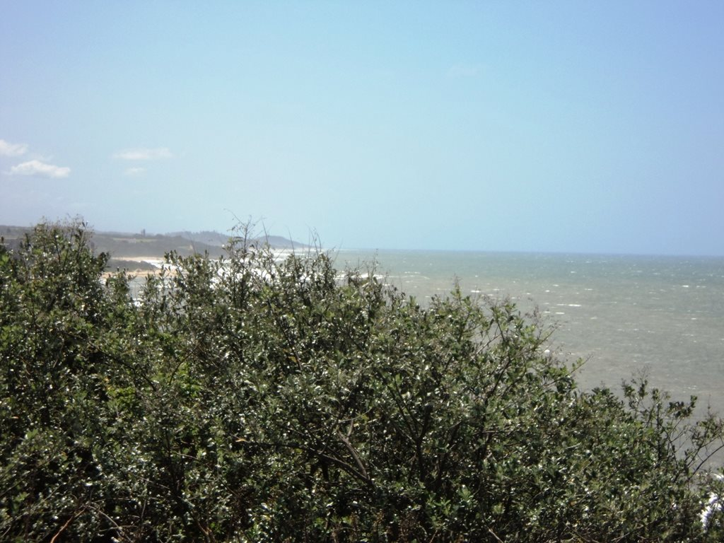 Bazley Beach for sale property. Ref No: 12767462. Picture no 7