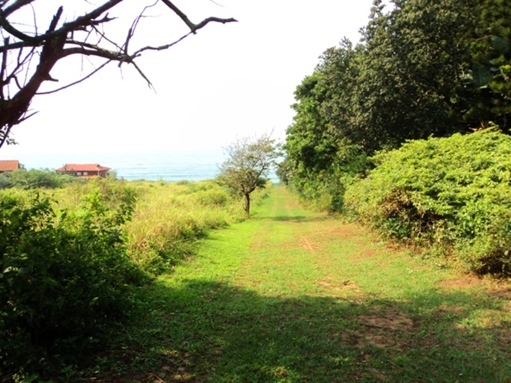 Bazley Beach property for sale. Ref No: 12729399. Picture no 5